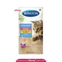 بستنی گربه وینستون ۸ عددی