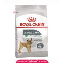 غذای خشک سگ مبتلا به بیماری های دهان  و دندان